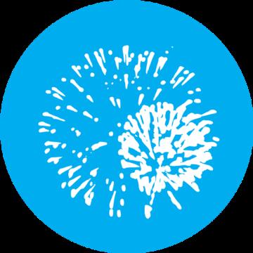 fmFireWorks logo